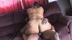 Tony Eveready drills Jasmine's wet pussy doggy style and she loves it