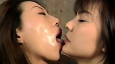Kinky Asian sluts in lingerie open up to take load after load of cum