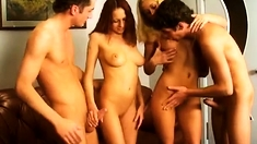 hardcore group anal sex copulate