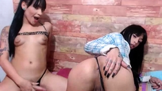 Mix Of Transsexual Porn Movies From Shemales Bump Shemales