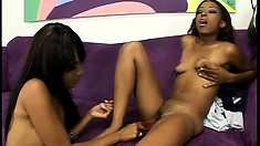 Lovely black girls strip off their clothes and drill each other's twats with a dildo